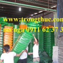 thung-rac-moi-truong-120-lit-da-nang